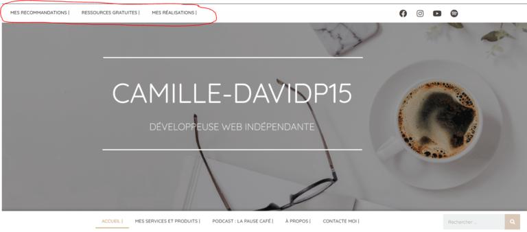 Les choses à ne pas faire sur ton site - Camille-Davidp15