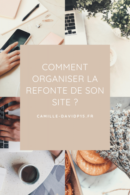 Camille-Davidp15 - comment organiser sa refonte v1