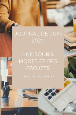 Journal de Juin 2021 une souris morte et des projets