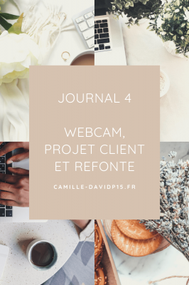 journal de Janvier 2021 webcam, projet client et refonte v3